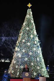 unique christmas trees from around the world sgforums com