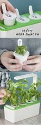 the 25 best herb garden kit ideas on pinterest standing planter