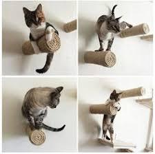 Wall Shelves For Cats Cat Accessories Cat Shelves Cat Furniture Pet Design Cat Bed