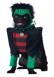 green bay packers halloween costumes pet costumes cat u0026 dog halloween costumes halloweencostumes com