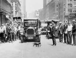 cat exploits long before youtube the new york times