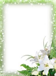 green png photo frame with flowers photos u0026 frames pinterest