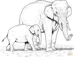 indian elephant baby and mother coloring page free printable