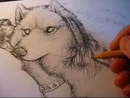 anthro wolf draw fur with pencil youtube