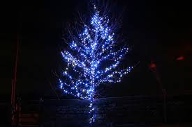 outside christmas lights impressive look of blue and white outdoor christmas lights