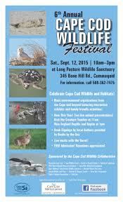 celebrate wildlife at the cape cod wildlife festival national