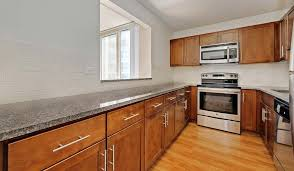 chicago one bedroom apartment hyde park 1 bedroom apartments for rent chicago il apartments com