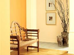 paint for home interior home interior painting alternatux