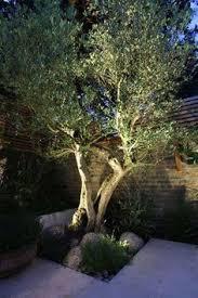how to design garden lighting outdoor lighting 101 landscaping lights and outdoor lighting