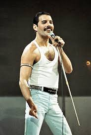 best biography freddie mercury our funny forefathers queen unseen and the enigma and brilliance