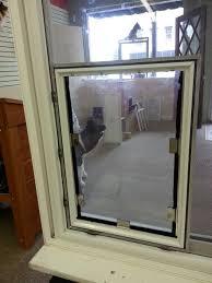 backyards install cat doorcan cats get pink eye door wellington