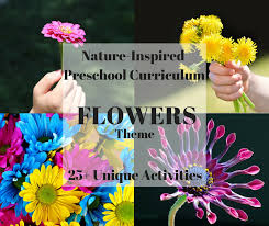 All About Flowers - flowers theme u2013 pre k k curriculum your natural learner
