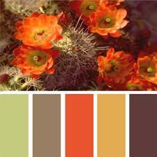 Autumn Color Schemes Best 25 Orange Color Schemes Ideas On Pinterest Blue Orange
