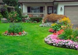 garden designer of composition for garden design
