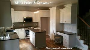 Spray Paint Kitchen Cabinets Kitchen Cabinets 03 Attractive Personalised Home Design