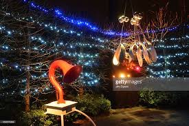 illuminated trail lights up kew gardens for christmas photos and