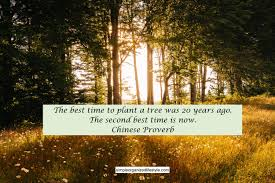 best time to plant a tree quote simple organized lifestyle