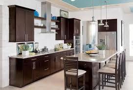 kitchen espresso kitchen cabinets 5 espresso kitchen cabinets