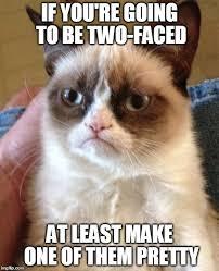 Two Face Meme - grumpy cat meme imgflip