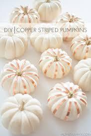 white pumpkins diy copper striped pumpkins