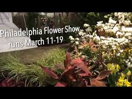 Wholesale Flowers Philadelphia - philadelphia flower show 2017 quick look at the holland themed
