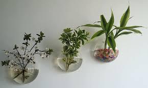 indoor wall plant wall indoor wall planter box u2013 ecofloat info
