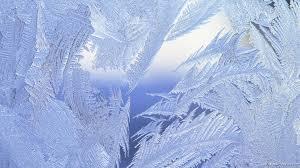 winter background scenes wallpapersafari