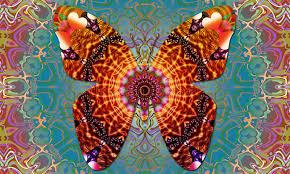 butterfly mandala vibes stock illustration illustration of
