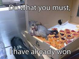 Krispy Kreme Meme - i just woke up and at a whole box of krispy kreme doughnuts me