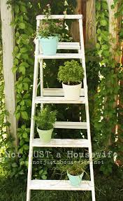 Home Plant Decor by Ladder Plant Stand Love This Idea I Have A Couple Old Ladders