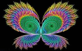 neon colors rock images butterfly hd wallpaper and background