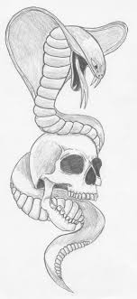snake and skull by zzzisch on deviantart