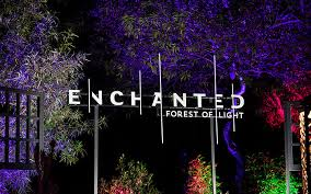 enchanted forest of light tickets descanso gardens enchanted forest of light makes holiday debut
