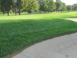 meadowbrook country club golf course maintenance fall projects