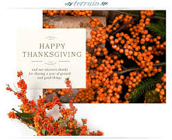 16 best thanksgiving email images on email marketing