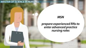 nursing requirements by degree level
