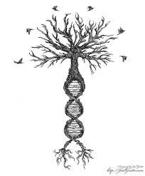 family tree design by sur mata on deviantart