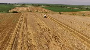 ufa russia 05 06 2016 ufa russia august 22 2013 a combine harvester header