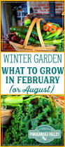 what to plant in your winter vegetable garden in february or