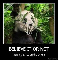 ninja panda meme by epic conjurer memedroid