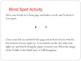 Blind Spot Left Eye Communication Topic 3 The Human Eye Ppt Video Online Download