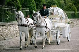 bianchi carrozze carrozza e cavalli bianchi per matrimonio white horses and
