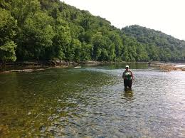Tennessee rivers images Fly fishing on the clinch river clinton tennessee fly fishing jpg