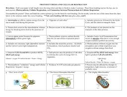concept map u2013 photosynthesis and cellular respiration