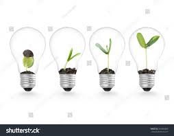 Home Design Ecological Ideas Plant Growing Lightbulb Ecology Ideas Growth Stock Photo 316689260