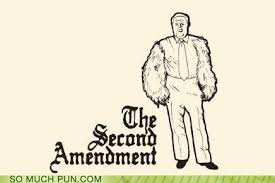 Right To Bear Arms Meme - the second ammendment puns pun pictures