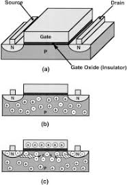Basic Cross - schematic cross section of a nmos transistor a the transistor