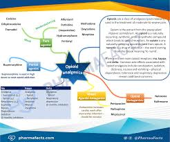 opioid analgesics mindmap pharmacolog pinterest pharmacology