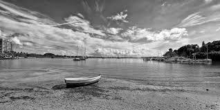 black u0026 white ron wooldridge photography florida back country