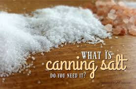 sea salt and table salt what is canning salt and do you need it preparednessmama